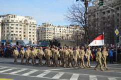 Military parade with american military Stock Image