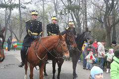 Military parade - Cavalry display. Cavalry men displaying in park for everybody to see them close Stock Images