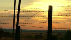 Military or prison fence of barbed wire at sunset close-up. The border zone, the danger zone, the security zone, the. Fence of the military unit and the prison stock video footage