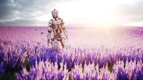 Military robot, cyborg with gun in lavender field. concept of the future. 3d rendering. Military robot, cyborg with gun in lavender field. concept of the future Stock Photography