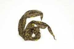 Military scarf Stock Photography