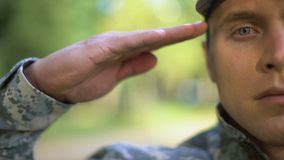 Military serviceman saluting, protection strategy, war mission, armed forces. Stock footage stock video footage