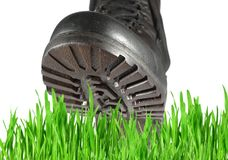 Military shoe and grass Royalty Free Stock Photos