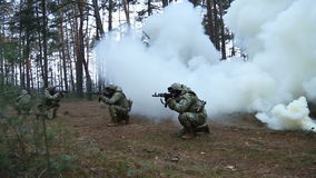 Military special forces perform the job in the forest stock video