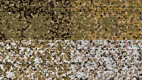 Military texture camouflage colors Stock Image