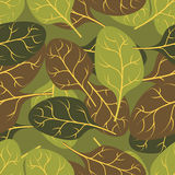 Military texture of  leaves Spinach. Camouflage army seamless pa Stock Photography