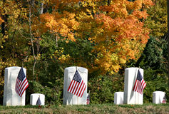 Military tombstones and flags. A view of military graves decorated with American flags for Veteran's Day with fall foliage in the background stock photos