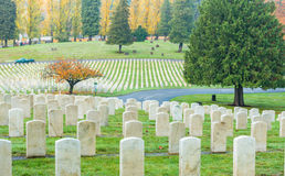 Military tombstones in the grave yard. Royalty Free Stock Photos