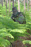 Military training combat. Forest/jungle environment Royalty Free Stock Image