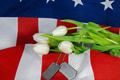 Military Tribute Stock Photos