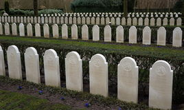 Military war cemetery Royalty Free Stock Image