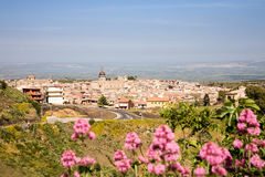 Militello in Val di Catania, Sicily, Italy. A cityscape of the baroque town of Militello in Val di Catania of southern Sicily, Italy Royalty Free Stock Photography