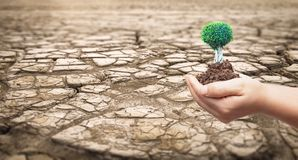 Miljö- begrepp: Del av ett enormt område av lidande för torkat land från torka arkivbild