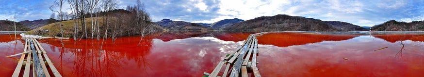 Miljö- katastrof. Panorama av en sjö med förorenar mycket arkivfoton