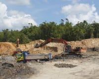 Miljö- problem för skogsavverkning Arkivbilder