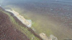 Miljö- problem, skum bildas i vattnet stock video