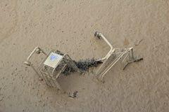 Miljö- skada arkivbild