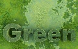 miljögreen Royaltyfri Foto