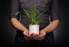 miljön skyddar Arkivfoto