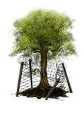 miljöskydd Stock Illustrationer