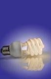 miljövänlig lampa Arkivfoton