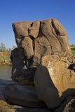 150 miljoen jaar oude Fossielen Stock Foto