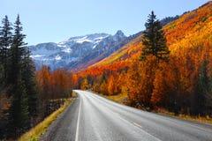 Miljon dollarhuvudväg Arkivfoto