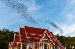 Miljon slagträn på Thailand royaltyfria bilder