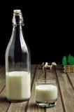 Milk Royalty Free Stock Photo