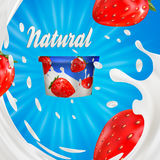 Milk ad or 3d strawberry yogurt flavour promotion. milk splash with fruits  on blue. instant oatmeal advertising. Open field background, 3d illustration Royalty Free Stock Images