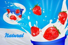 Milk ad or 3d strawberry yogurt flavour promotion. milk splash with fruits isolated on blue. instant oatmeal advertising. Open field background, 3d Stock Photography