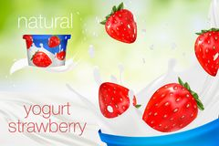 Milk ad or 3d strawberry yogurt flavour promotion. milk splash. With fruits isolated on green nature background. instant oatmeal advertising, open field Royalty Free Stock Images