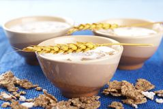 Free Milk And Cornflakes Royalty Free Stock Images - 10969159
