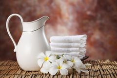 Milk bath Stock Photography