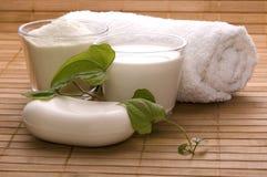 Milk bath. white spa Royalty Free Stock Photos