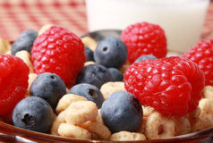 Milk and berries. Blueberries and raspberries with cereal and milk Royalty Free Stock Photos
