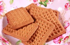 Milk biscuits in a designed colourful food plate. Royalty Free Stock Images