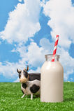 Milk Bottle Royalty Free Stock Photo