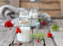 Milk in a bottle Stock Images