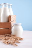 Milk bottle in the box Stock Images