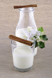 Milk in a bottle. With cinnamon and apple flower Stock Images