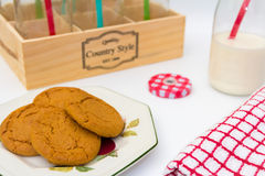 Milk Bottle and Ginger Cookies. A display of Milk Bottle and Ginger Cookies on a white background Stock Images