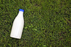 Milk bottle on the grass with copy space Stock Image