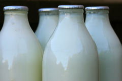 Milk bottles Stock Photos