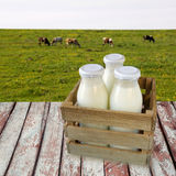 Milk in a box on wooden table overlooking a meadow with grazing Royalty Free Stock Photography