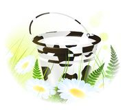 Milk bucket at meadow Royalty Free Stock Images