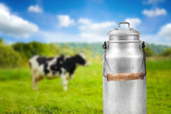 Milk Can Against Cow Pasture Meadow Royalty Free Stock Photography