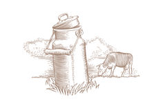 Milk can and brown cow Royalty Free Stock Photos