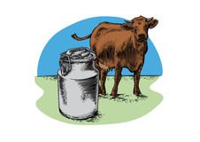 Milk can and brown cow on grass Stock Photography