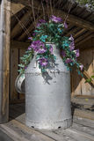 Milk can with flowers Royalty Free Stock Photo